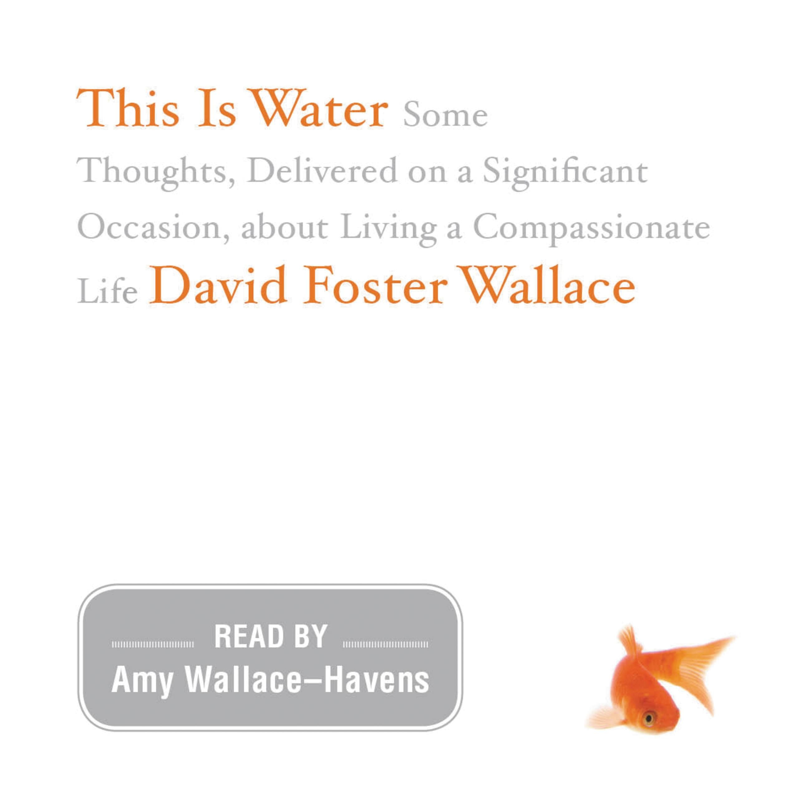 david foster wallace hachette book group this is water the original david foster wallace recording