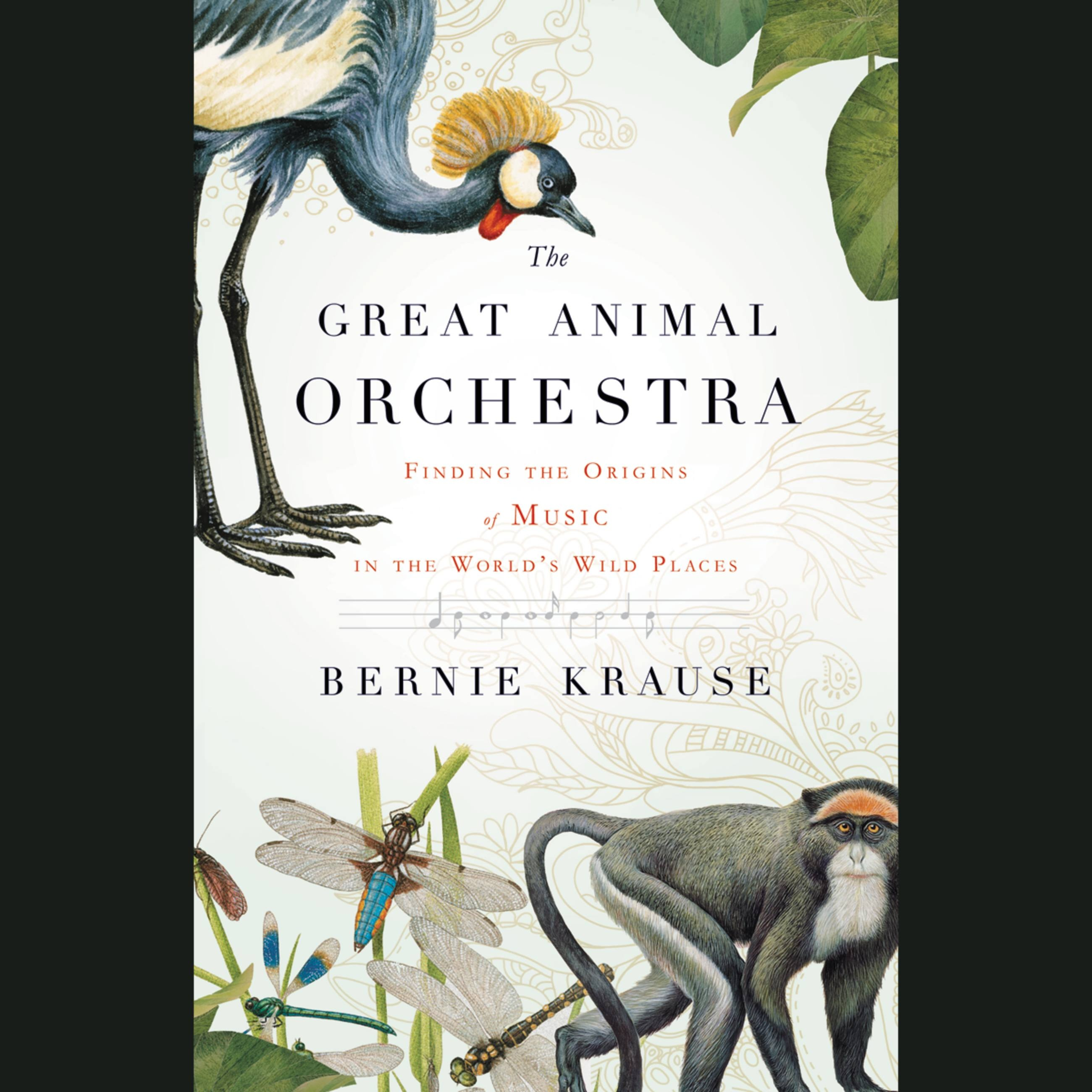 Image result for the great animal orchestra book